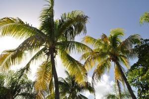 Jak zaplanować bezpieczne wakacje